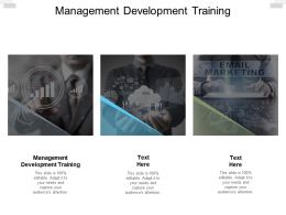 Management Development Training Ppt Powerpoint Presentation Summary Model Cpb