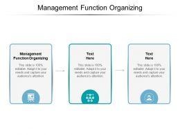 Management Function Organizing Ppt Powerpoint Presentation Icon Model Cpb