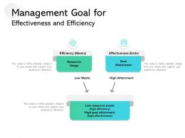 Management Goal For Effectiveness And Efficiency