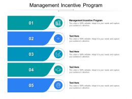 Management Incentive Program Ppt Powerpoint Presentation File Example Cpb