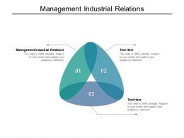 Management Industrial Relations Ppt Powerpoint Presentation Infographic Template Deck Cpb