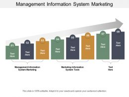 Management Information System Marketing Marketing Information System Tools Cpb