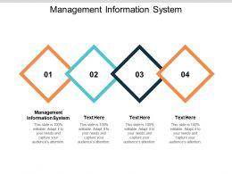 Management Information System Ppt Powerpoint Presentation Summary Portfolio Cpb