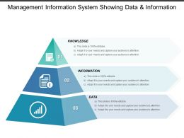 Management Information System Showing Data And Information
