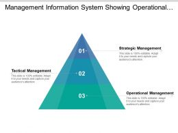Management Information System Showing Operational And Tactical Management