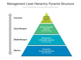 Management Level Hierarchy Pyramid Structure