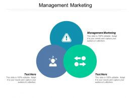 Management Marketing Ppt Powerpoint Presentation Icon Brochure Cpb