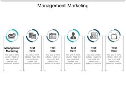 Management Marketing Ppt Powerpoint Presentation Styles Pictures Cpb