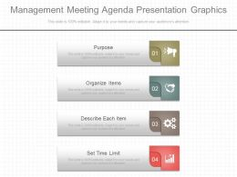 Management Meeting Agenda Presentation Graphics