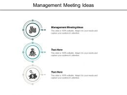 Management Meeting Ideas Ppt Powerpoint Presentation Pictures Files Cpb