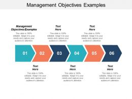 Management Objectives Examples Ppt Powerpoint Presentation Infographic Template Styles Cpb