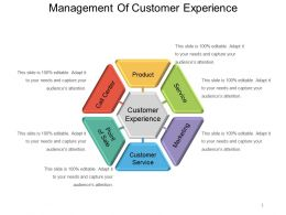 Management Of Customer Experience Powerpoint Slide Deck