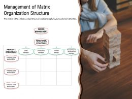Management Of Matrix Organization Structure