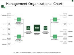 Management Organizational Chart Powerpoint Slide Information