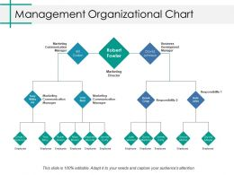 Management Organizational Chart Ppt Professional Background Image