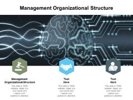 Management Organizational Structure Ppt Powerpoint Presentation Infographics Cpb