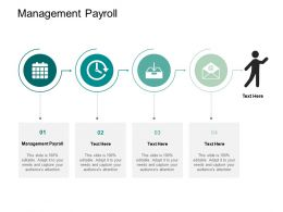 Management Payroll Ppt Powerpoint Presentation Styles Tips Cpb