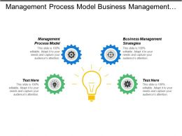 Management Process Model Business Management Strategies Strategic Management Planning Cpb