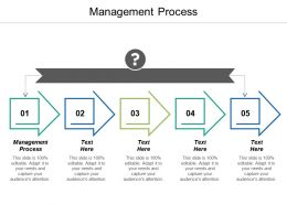 Management Process Ppt Powerpoint Presentation Infographics Infographics Cpb
