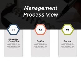 management_process_view_ppt_powerpoint_presentation_gallery_graphics_pictures_cpb_Slide01