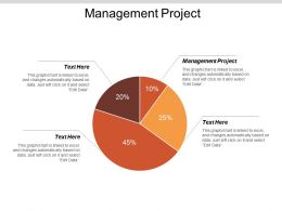 Management Project Ppt Powerpoint Presentation Model Guidelines Cpb