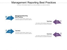 Management Reporting Best Practices Ppt Powerpoint Presentation Outline Ideas Cpb