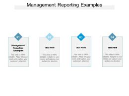 Management Reporting Examples Ppt Powerpoint Presentation Professional Formats Cpb