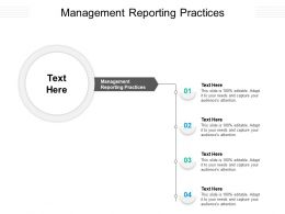 Management Reporting Practices Ppt Powerpoint Presentation Outline Guide Cpb