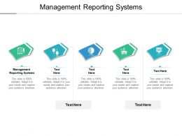 Management Reporting Systems Ppt Powerpoint Presentation Summary Samples Cpb