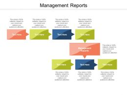 Management Reports Ppt Powerpoint Presentation Ideas Graphics Cpb