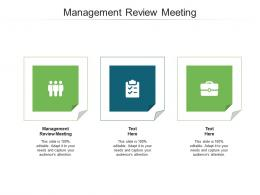 Management Review Meeting Ppt Powerpoint Presentation Slides File Formats Cpb