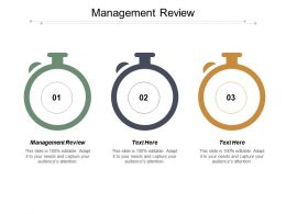Management Review Ppt Powerpoint Presentation Portfolio Layout Ideas Cpb