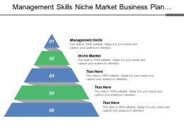 Management Skills Niche Market Business Plan Analysis Marketing Mix Models