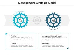 Management Strategic Model Ppt Powerpoint Presentation Inspiration Aids Cpb