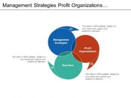 Management Strategies Profit Organizations International Communication Capital Management Cpb