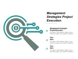 Management Strategies Project Execution Ppt Powerpoint Presentation Portfolio Ideas Cpb