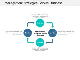 Management Strategies Service Business Ppt Powerpoint Presentation Icons Cpb