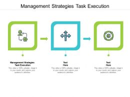 Management Strategies Task Execution Ppt Powerpoint Presentation Layouts Summary Cpb
