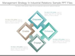 Management Strategy In Industrial Relations Sample Ppt Files