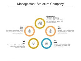 Management Structure Company Ppt Powerpoint Presentation Infographics Show Cpb