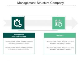Management Structure Company Ppt Powerpoint Presentation Styles Gallery Cpb