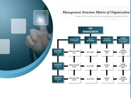 Management Structure Matrix Of Organization