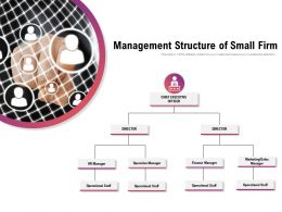 Management Structure Of Small Firm