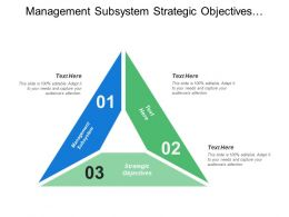 Management Subsystem Strategic Objectives Demand Forecasts Company Policies