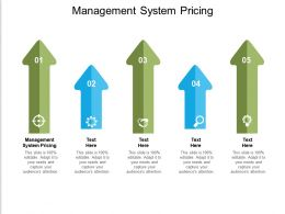 Management System Pricing Ppt Powerpoint Presentation Pictures Template Cpb