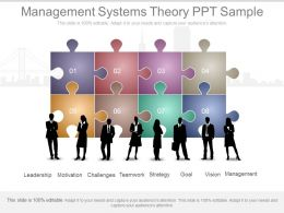 Management Systems Theory Ppt Sample
