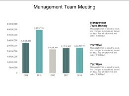 Management Team Meeting Ppt Powerpoint Presentation Outline Guidelines Cpb