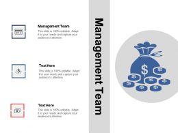 Management Team Ppt Powerpoint Presentation File Gridlinescpb