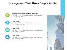 Management Team Roles Responsibilities Ppt Powerpoint Presentation Slides Cpb