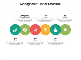 Management Team Structure Ppt Powerpoint Presentation File Rules Cpb